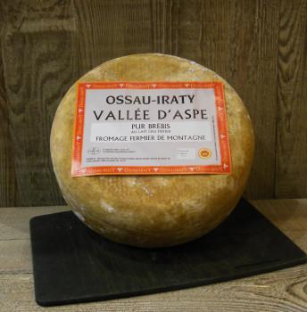 Brebis Ossau-Iraty AOP